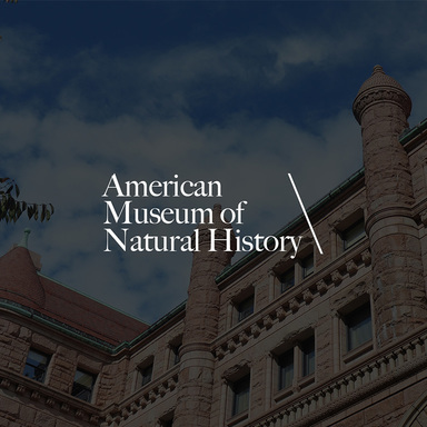 Loupe / American Museum of Natural History