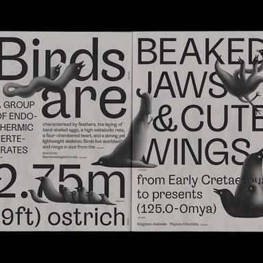 Bird Grotesk Type Specimen