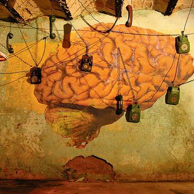 Mind Cellars