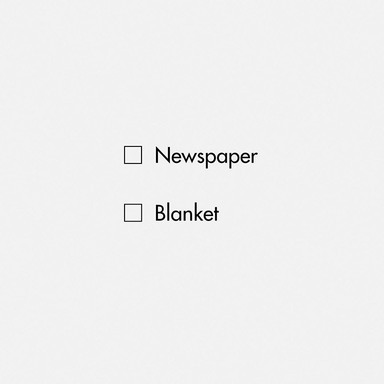 Newspaper/Blanket