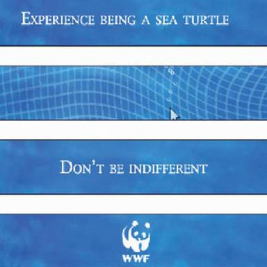 Free, Trap, Turtle