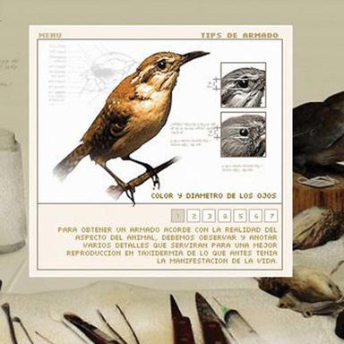 Museo de las Aves de Mexico