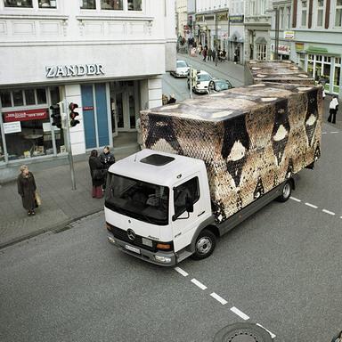 The Snake Truck Lettering