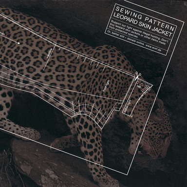 Leopard, Crocodile, Seal