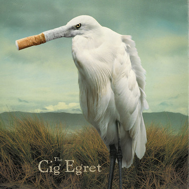 Cig Egret