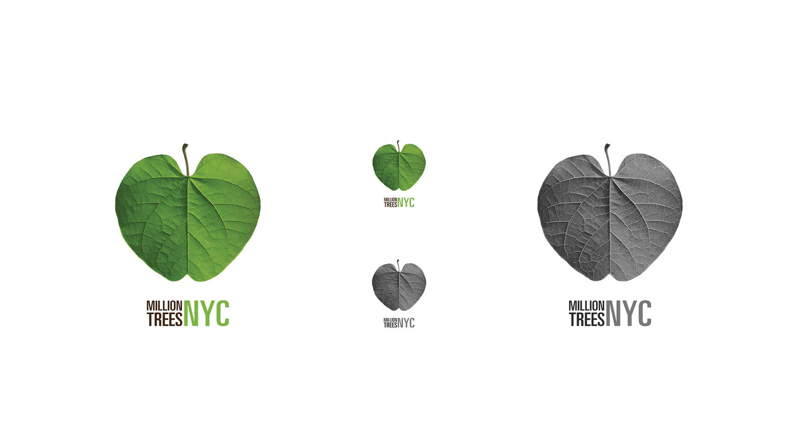 The Big Apple Leaf