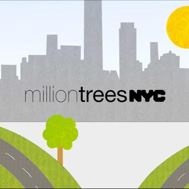 Trees 4 trees.