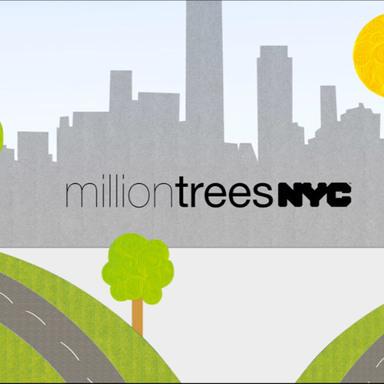 Trees 4 trees