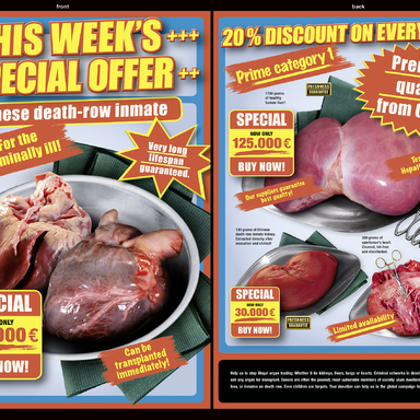 Organs on Offer Supplement
