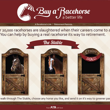 Save A Racehorse