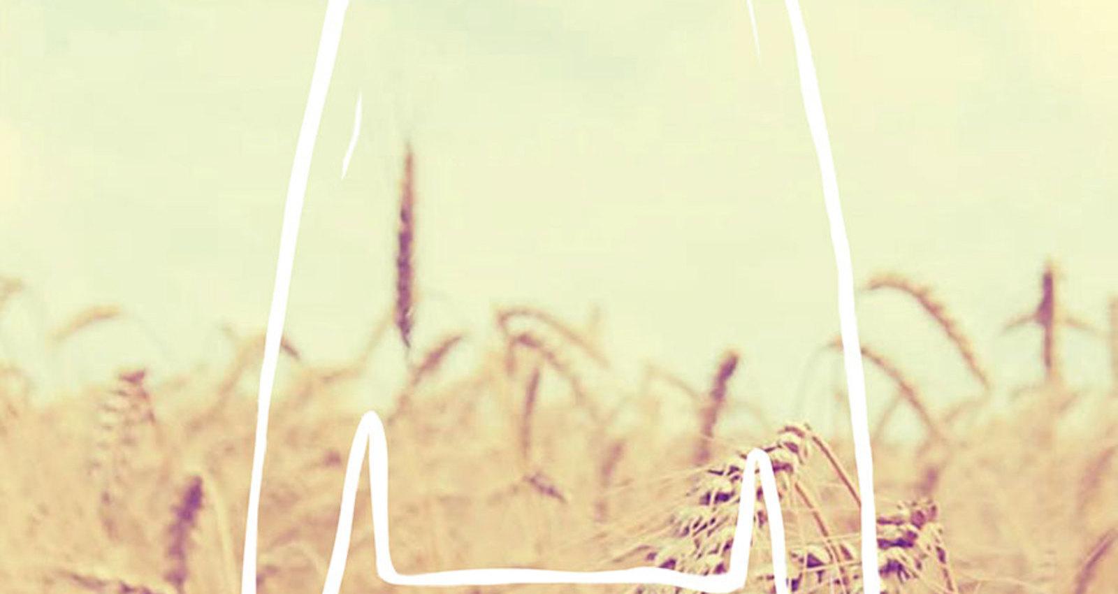 Organic: Fashion from Nature