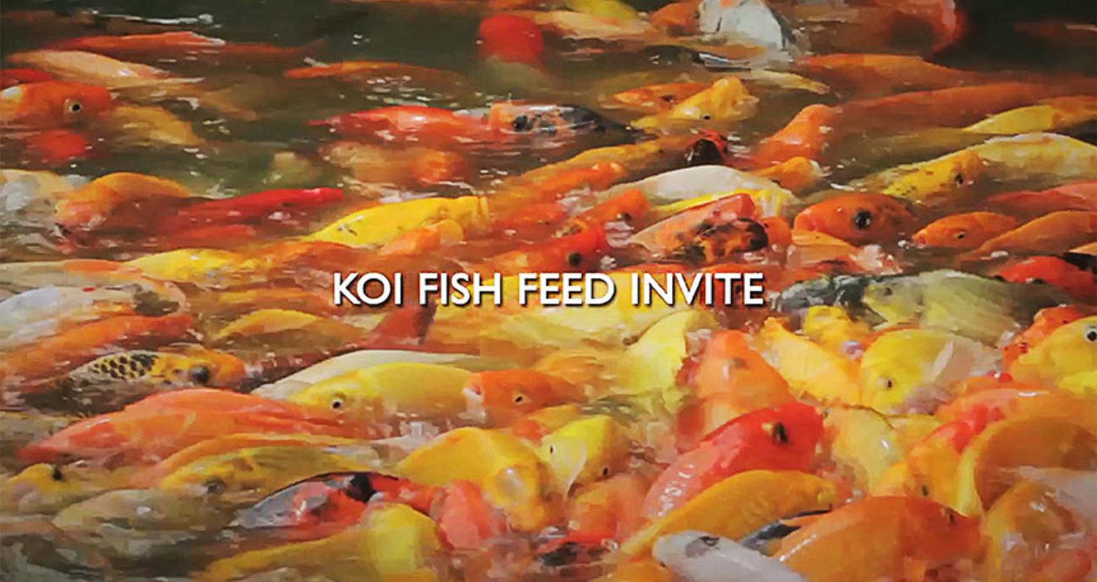 Koi Fish Feed Invite