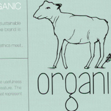 Introducing Organic: We're Changing Clothes