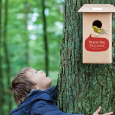 Birdhouse Box