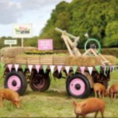 The World's First Really Live Pig Feed