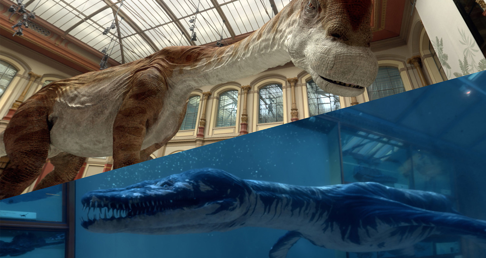 Back to Life in Virtual Reality: Rhomaleosaurus & Giraffatitan