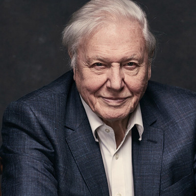 Sir David Attenborough's Story of Life