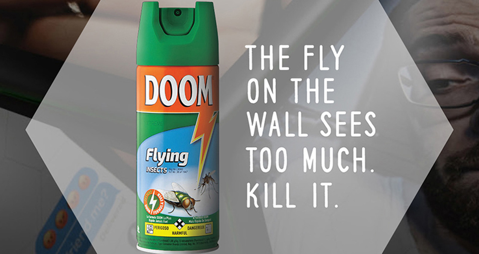 Fly on the Living Room Wall