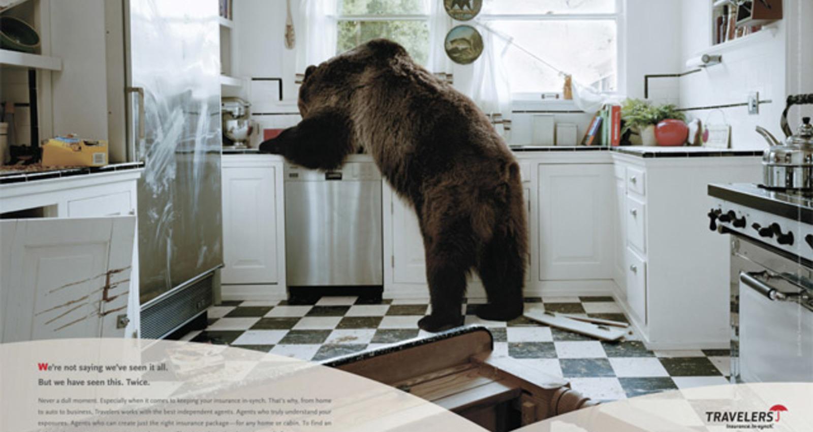 Bear in Kitchen