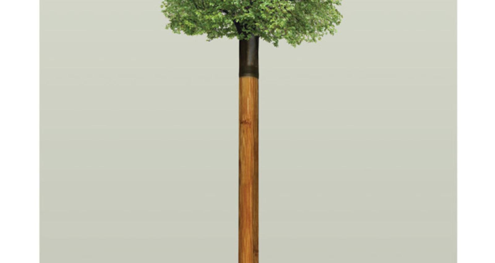 Tree Shovels