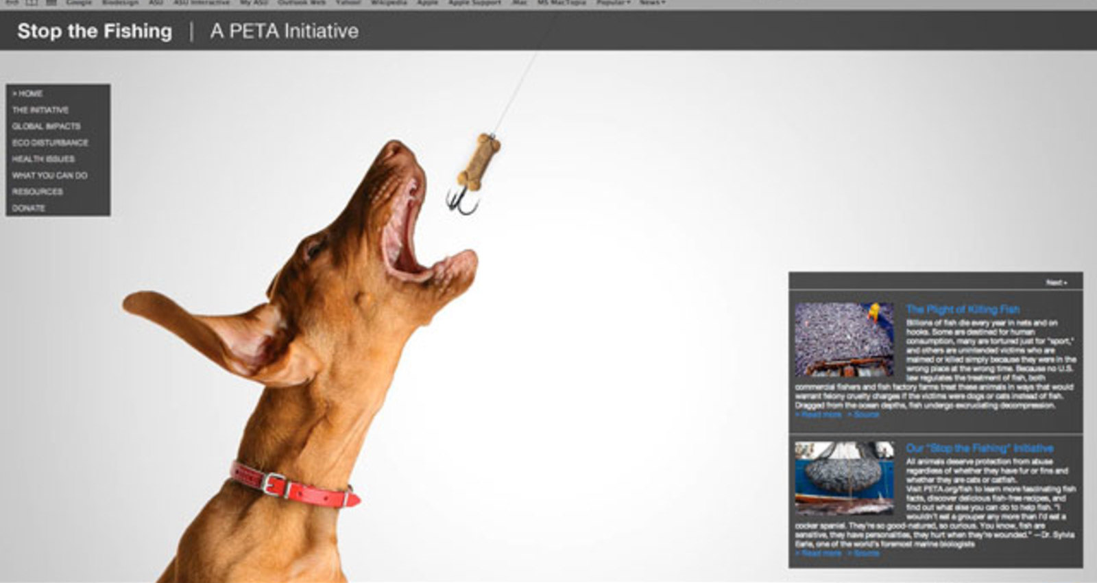 Stop the Fishing   |   A PETA Initiative