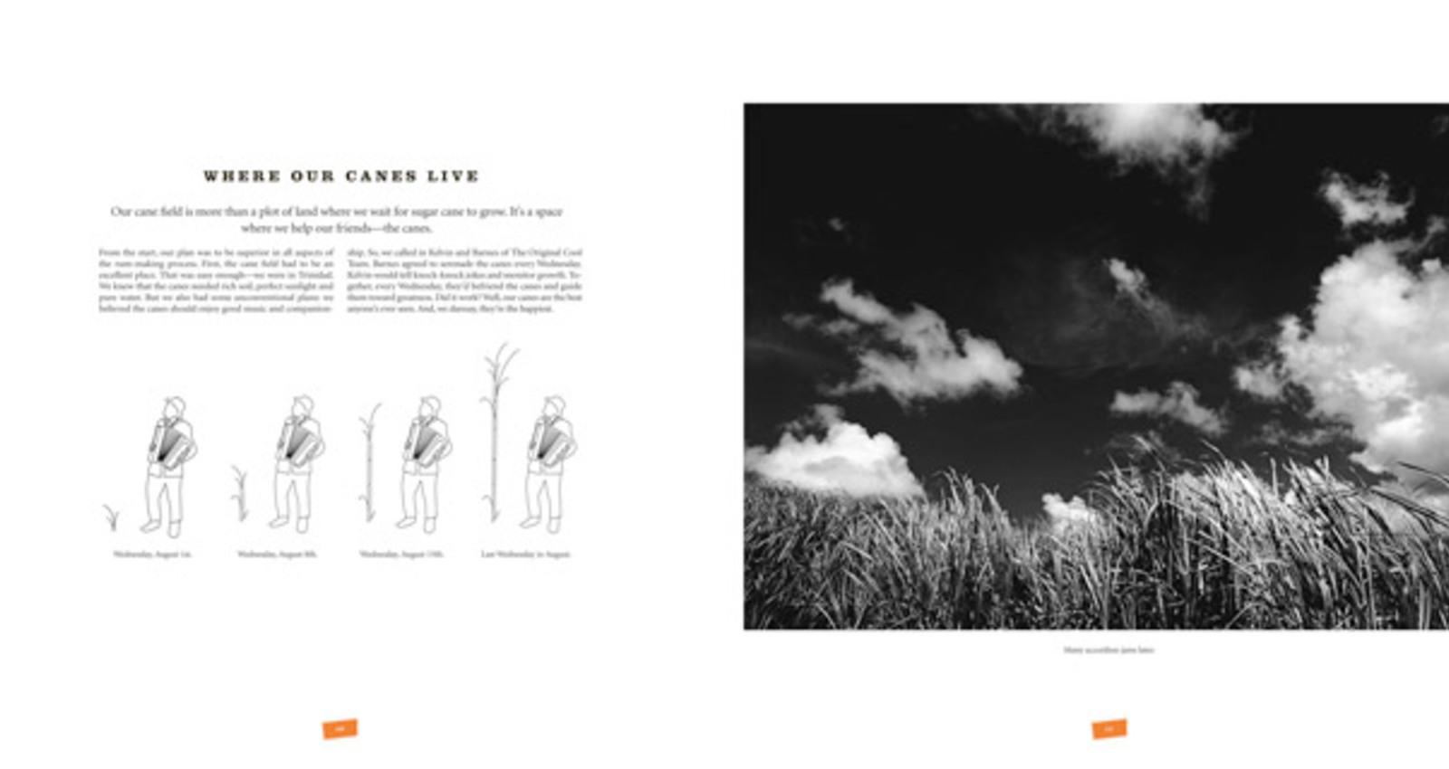 10 Cane Magazine