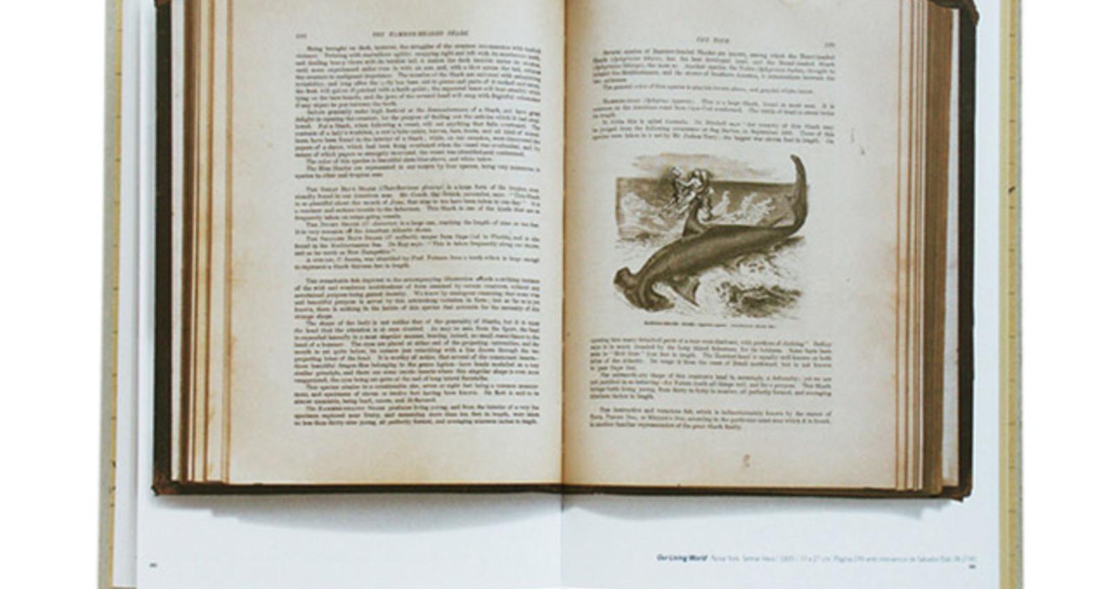 Dali Llibres