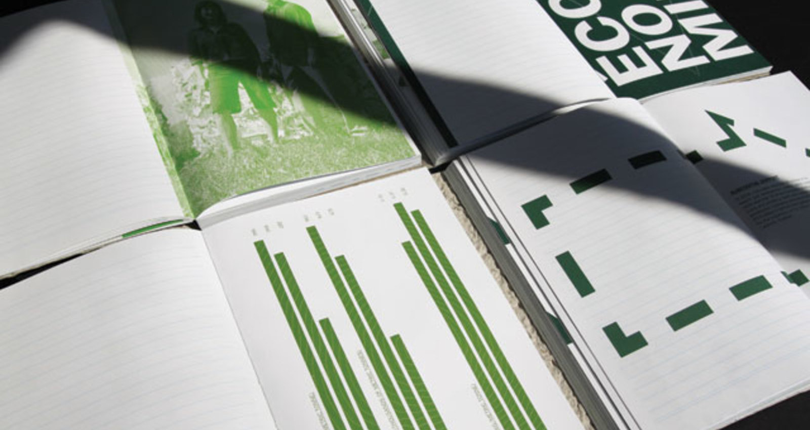 Cascades 2009 Annual Report on Sustainable Development