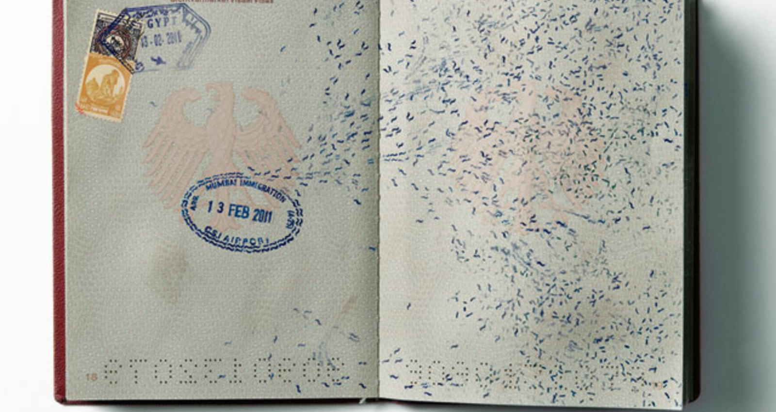 Infectious Passports