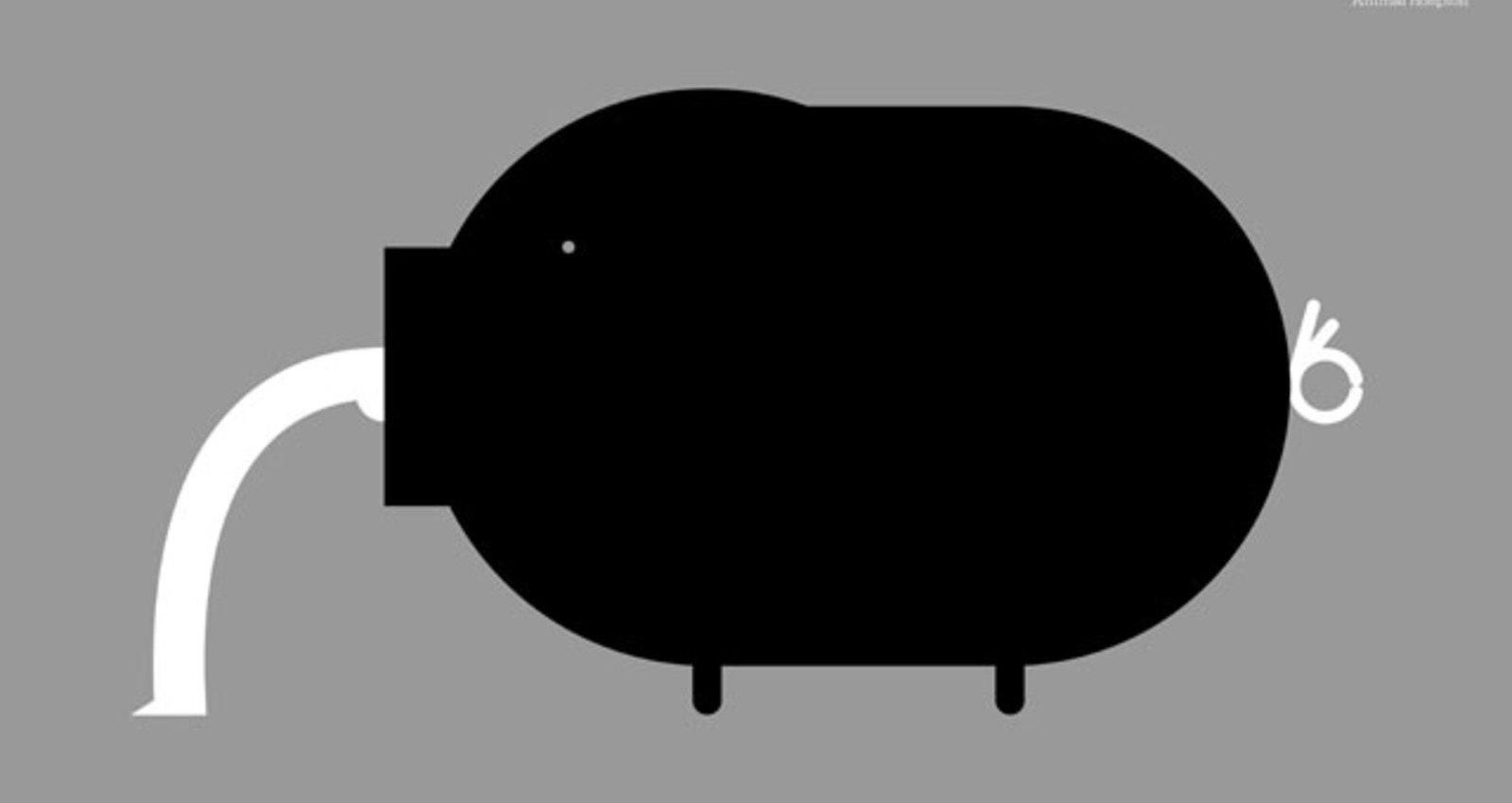 Pig / Dog / Cat