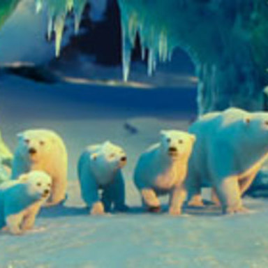 The Polar Bears Movie