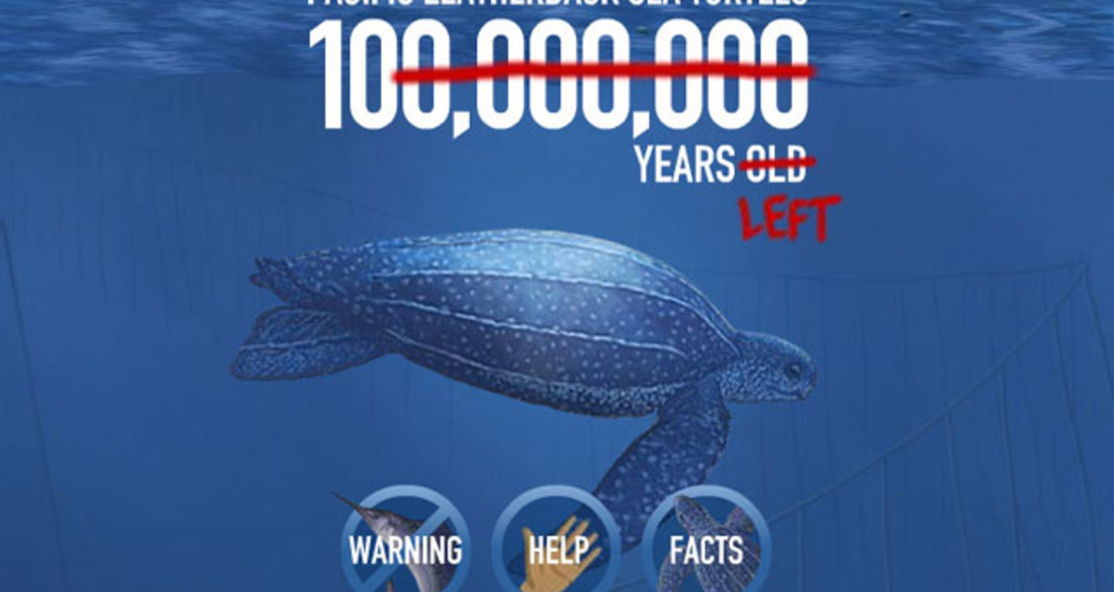 Save the Leatherback