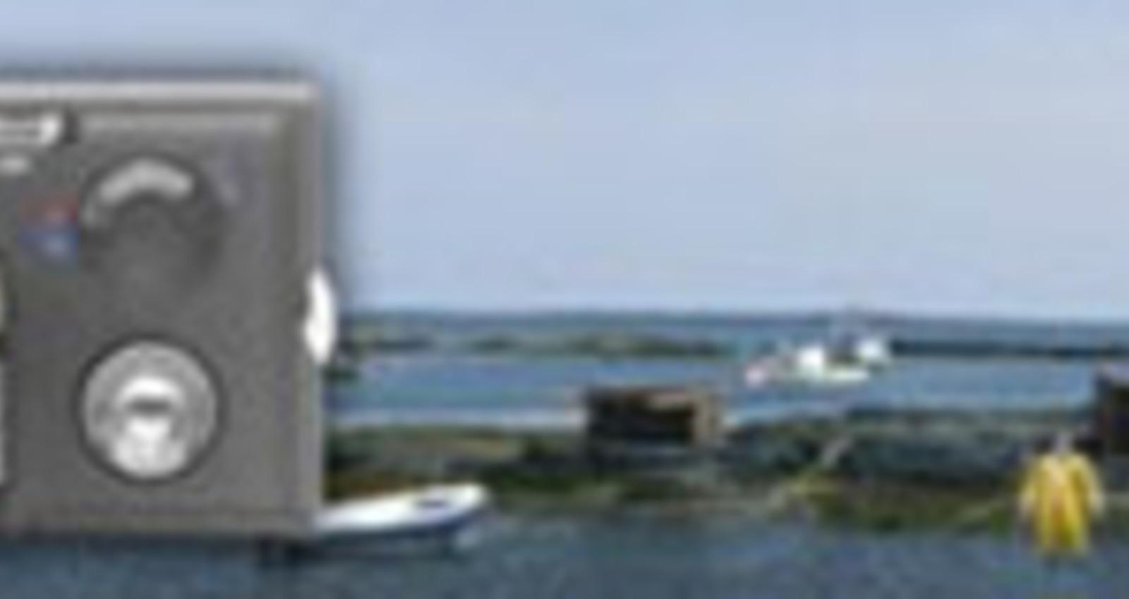 HP Zoom Banner