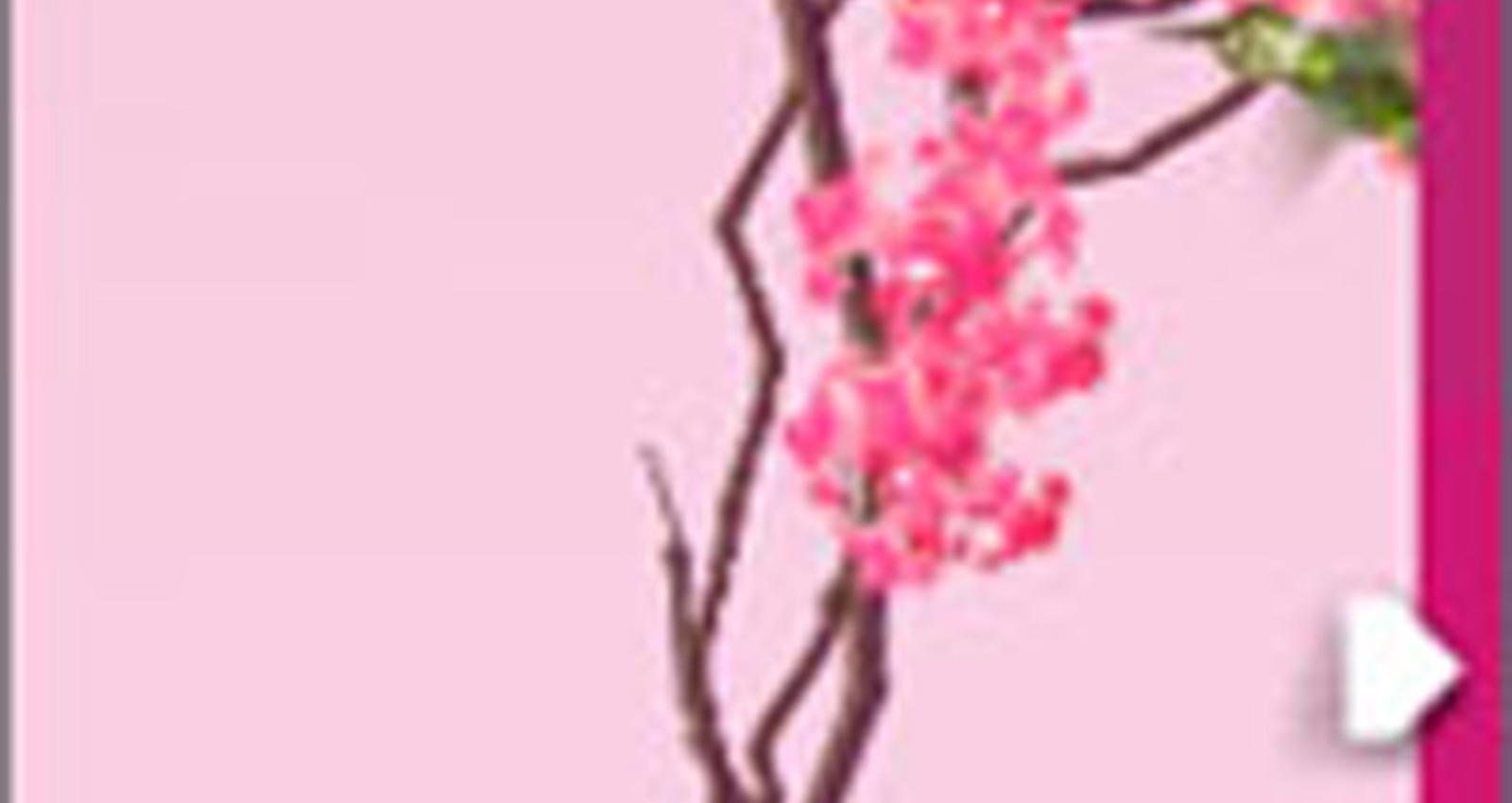 HP Vivera Hummingbird Banner