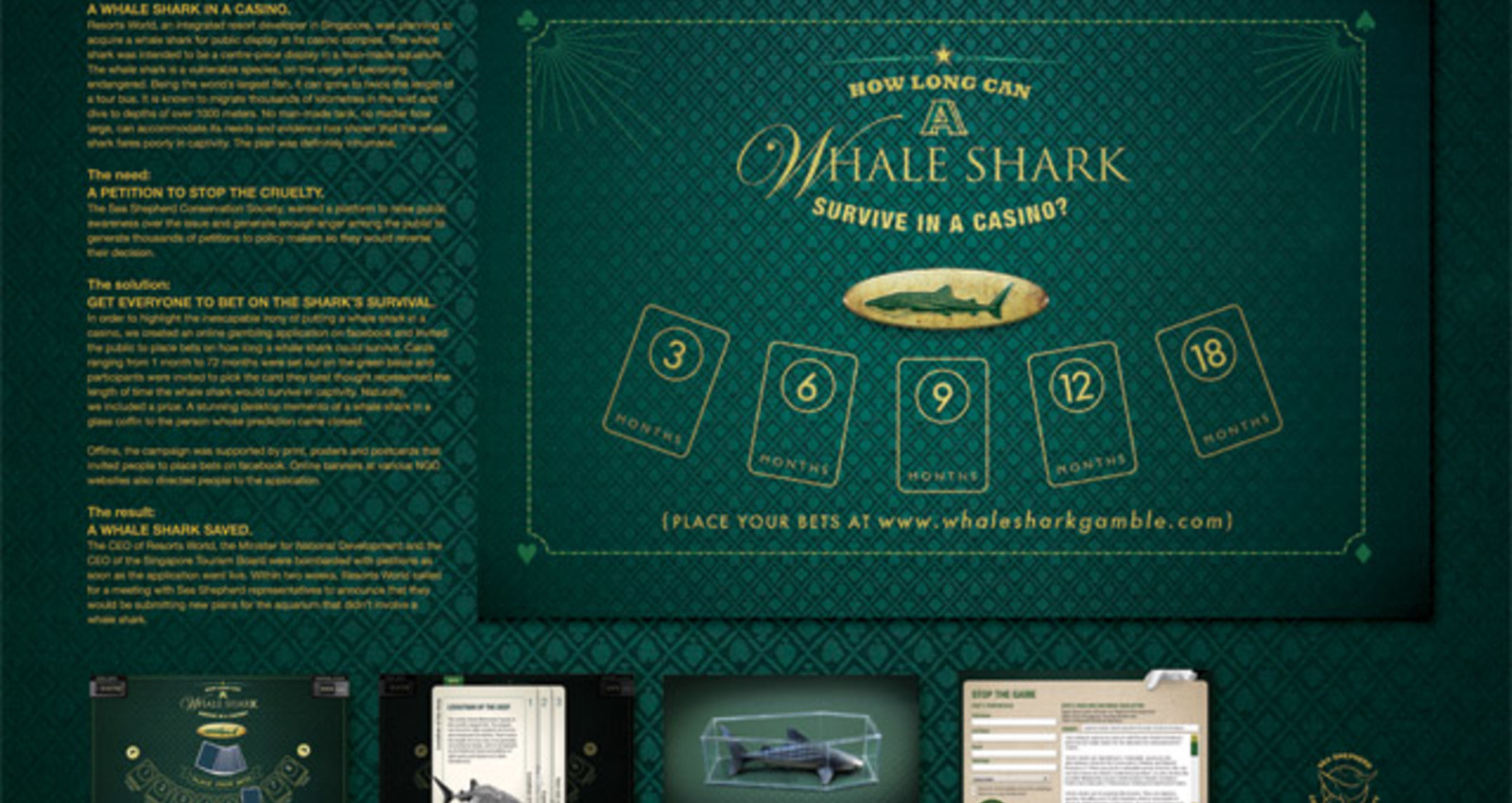 Whale Shark Gamble
